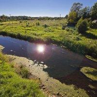 Солнце в реке :: Сергей Григорьев