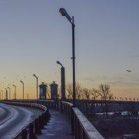 Мост :: Владимир Николаевич