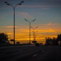 Когда стремительный рассвет... :: Алла Кочергина
