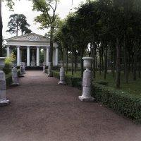 Аллея в Собственном садике императрицы :: Valerii Ivanov