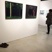На той же выставке, но обувь - тоже не моя. :-)) :: Михаил Палей