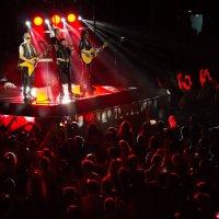 Scorpions, 2015 :: Olga Starling