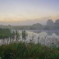 Августовское утро над озером. :: Виктор Евстратов