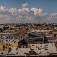 панорама :: Жанна Залесская
