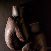 Боксёры :: Николай Немков