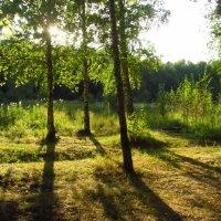 Август - еще лето! :: Андрей Лукьянов