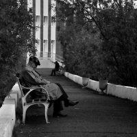 Одинокая старость... :: Витас Бенета