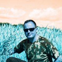Пшеничка) :: Евгений Золотаев