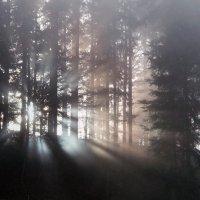 из-за леса, из-за гор... :: Elena Wymann