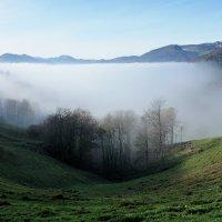 тумана белая река бежала вдаль, цепляя берега :: Elena Wymann