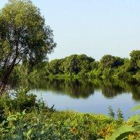 Утро у реки :: Юрий Стародубцев