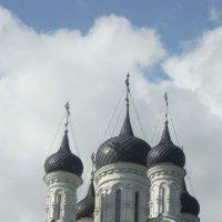 Устремлённые в небеса :: Iri_S (Ирина Саянова)