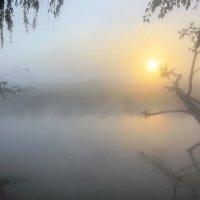 Рассветный светлячок... :: Андрей Войцехов