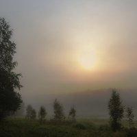Солнце в тумане :: Анатолий Иргл