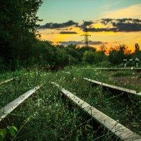 К закату :: Дмитрий Чернов