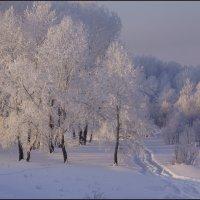 Тропинка в Зиму :: Наталия Григорьева