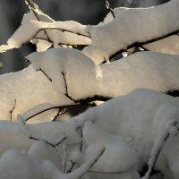 Зима, сугробы :: Виктор Х.
