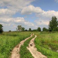 летние пейзажи :: Марина Черепкова