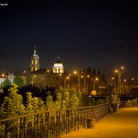 Ночной вид на Собор :: Юрий Гребенюк