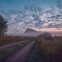 Утренний туман :: Николай Алехин