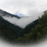 Колыбелька для тумана... :: Татьяна Койнова