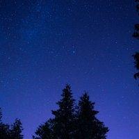 Ночь опускается на город :: Андрей Мешков