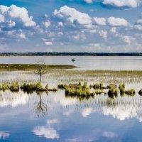 Лето На Разливе :: Виталий