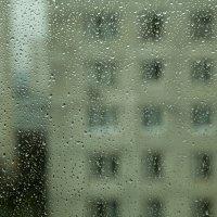 Осень за окном... :: Владимир Левый