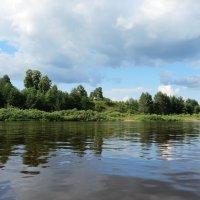 Дедов остров. Вид с реки Сухоны :: Георгий Кашин