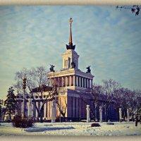 ..... зима в цвет... :: Victor