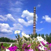 День Шахтёра 29 августа 2015 года в Луганске - программа мероприятий :: Наталья (ShadeNataly) Мельник