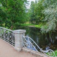 Парковое озеро :: Николай Николенко