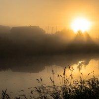 Утро :: Сергей Вахов