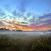 Утро туманного августа... :: Андрей Войцехов