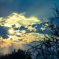 Небо после ужасной стихии :: Наталья Ковалева