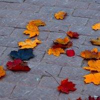 Скоро осень... :: Viktor Nogovitsin