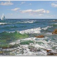 На морских просторах :: Эля Юрасова