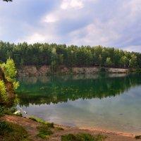 подводный лес :: Натали Акшинцева
