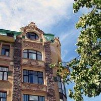 Если смотреть и наверх...На Невском проспекте :: Ирина Румянцева
