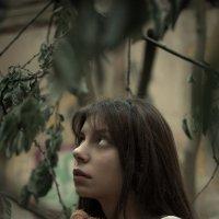 FOTOKVARTIRNIK_FOTOSTALKING_2 :: Артем Плескацевич