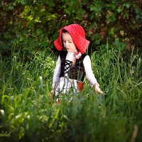 "фотопроект ""красная шапочка"" :: елена"