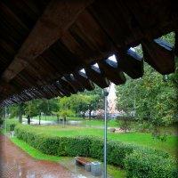 Дождь... :: Fededuard Винтанюк