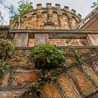 Джульетта, выйди на балкон,  Ведь это я, Ромео твой, приехал! :: Вячеслав Филиппов