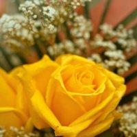 Роза :: ChernilaART .