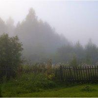 Утро туманное... :: Тамара Рылова