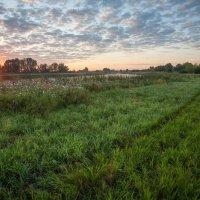 Первые лучи солнца :: Николай Алехин
