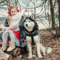 Красная шапочка и ее друг волк :: Ольга Осипова