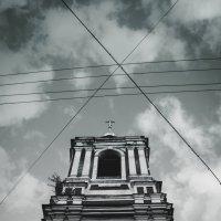Черно-белое :: Olga Buchinskaya