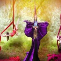 цирковая акробатика :: Вилена Романова