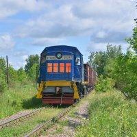 Тепловоз ТГМ4Б-0824 :: Денис Змеев
